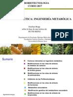 Ingenieria Metabolica Fondo Blanco2017