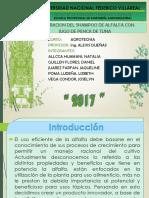 Elaboracion de Shampoo de Alfalfa y Penca