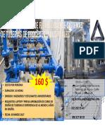 Curso de Analisis de Flexibilidad de Sistemas de Tuberias - Inteca 210217