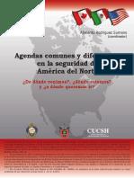 agendas_comunes.pdf