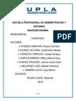 FINAL CAMPOSOL 123.docx