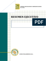 RESUMEN EJECUTIVO.docx