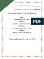 DIGESTIBILIDAD EN EL RUMEN.docx