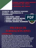 PERFO DIAPOSITIVA2