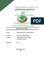 INFORME DE METODOLOGIA.docx