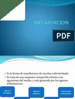 Inflamacion_(  Patologia )