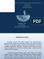 3146_Lapsus D Seboroik.pptx