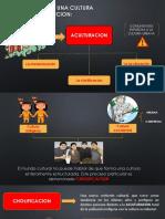 EL CHOLO COMO UNA CULTURA DE TRANSICION.pptx