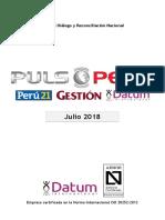 500-0118 - PULSO Julio 2018 - Informe Popularidad+Gobierno