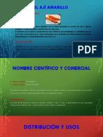 EL AJÍ AMARILLO.pptx