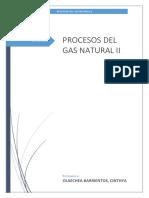 Procesos Del Gas Natural II