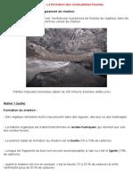 Bilan TP11 - La Formation Des Combustibles Fossiles.