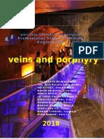 Informe Vetas y Porfidos en Ingles