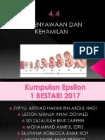4.4 Persenyawaan Dan Kehamilan (Epsilon)