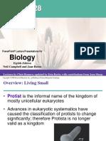 Chapter 28 Protista