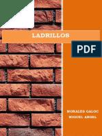17- Manual Del Ladrillo