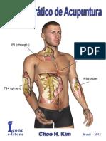 967606791Manual Prático de Acupuntura FRAGMENTOS(1).pdf