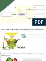 Presentación122018