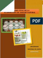 294499999-Informe-Final-Yogurt.docx