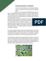 Deporte Como Factor Educativo y Sus Beneficios