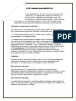 LA CONTAMINACION AMBIENTAL.docx