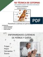 Parasitologia Wen Perros y Gatos