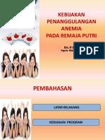 kebijakan Anemia Rematri pkm pamarayan.pptx