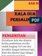 PP APN BAB III