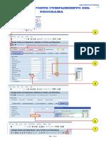 Guia Rapida Sap Mp0032 (Iw37n Reporte Del Cumplimiento Programa) v 0