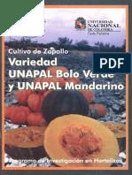 Cultivo de Zapallo Variedad UNAPAL Bolo Verde y UNAPAL Mandarino AB