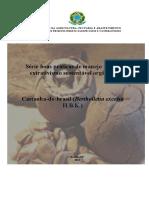 Boas Praticas de Manejo Para o Extrativismo Sustentavel Organico Da Castanha Do Brasil