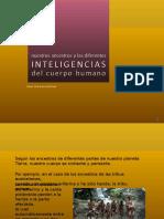 73-Ancestros & Inteligencias [Cr]