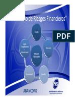 Seminario-Riesgo-de-Credito-y-Concentracion-(SB-ABANCORD).pdf
