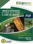 012-c-cana-de-azucar.pdf