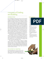 Principles of Grafting