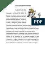 TAREA N°02 - PROPUESTA DE VALOR REPUBLICA CHECA