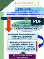 bioenergitika 1