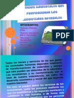 serviciosambientalesqueproporcionanlosecosistemasnaturales-130219165338-phpapp01