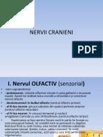 Nervii Cranieni Cefalee