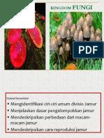 bab6fungi-140131085102-phpapp02