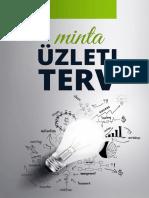 minta_uzleti_terv.docx