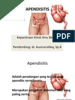 app (2).pdf