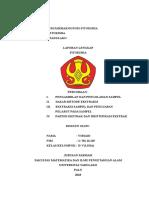 LAPORAN INDIVIDU FITOKIMIA.docx