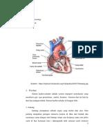 Anatomi Fisiologi Askep RLE v Donny