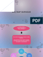 RAS-MAP