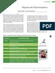 40 Hymenopteros.pdf
