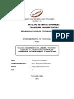 Informe Practicas Pre Profesionales 1