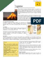 4.2_Tipos_de_Fogatas.pdf
