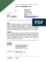 CV Ingles Sergio Canchumani