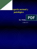 Mesa Redonda 04 - Puerperio Normal y Patológico A